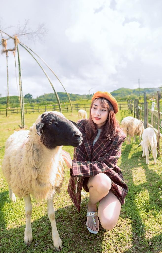 羊女.jpg